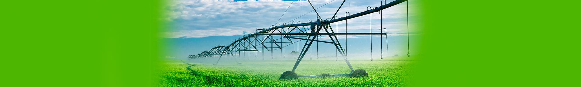 Farm Irrigation from Rainwater Harvesting